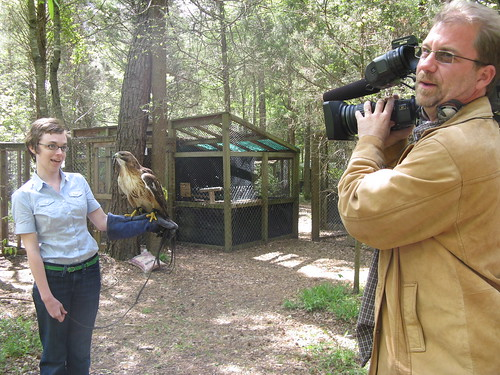 Carolina Raptor Center Shoot