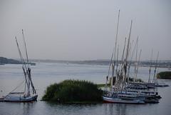 sailboats not doing any business (Simbon) Tags: cruise ship egypt middleeast nile sailboats aswan assuan nilecruise rivernile  crownempress