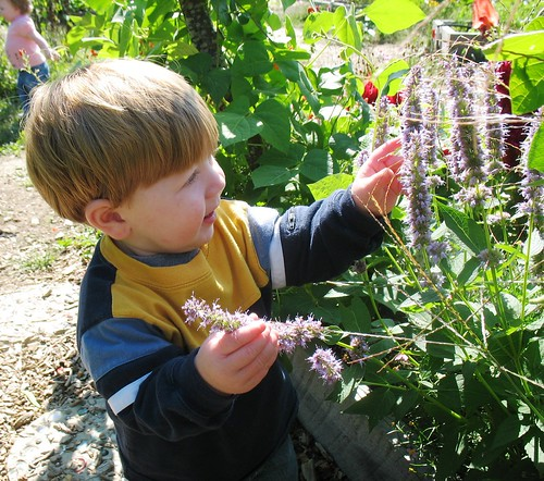 Children gardening (Photo courtesy of the University of New Hampshire)