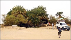 (843) Ain Khadra / National park white desert (unicorn 81) Tags: africa travel sunset white color sahara nature trekking landscape geotagged nationalpark sand colorful desert northafrica dunes dune egypt palm egyptian colourful egipto coloured 2009 gypten egitto egypte reise egypten rundreise roundtrip egipt gypte mapegypt saharadesert whitedesert westerndesert misr nordafrika egypttrip libyandesert april2009 gypten aegyptus libyschewste unicorn81 weisewste  whitedesertnationalpark gyptusintertravel gyptenreise schulzaktivreisen saharacolors nationalparkweisewste nationalparkwhitedesert meinjahr2009