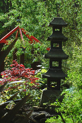 Pagoda and maple (Thomas Tolkien) Tags: school copyright art sports tom digital photography photo education nikon d70s teacher website scarborough teaching tolkien jrr tuition twitter robertbringhurst bringhurst peasholmpark thomastolkien tomtolkien httpwwwtomtolkiencom httpthomastolkienwordpresscom tolkienart notrelatedtojrrtolkien tolkienteacher tolkienteaching