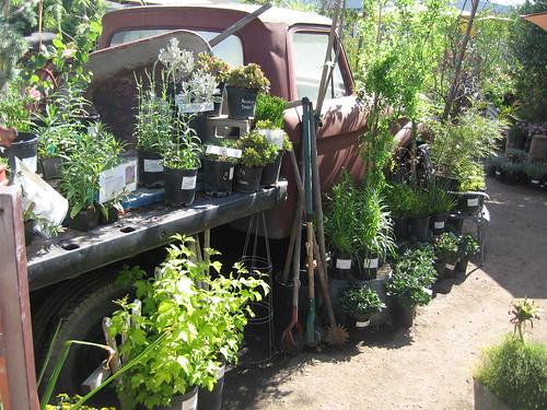 Johnnye Merle's Gardens