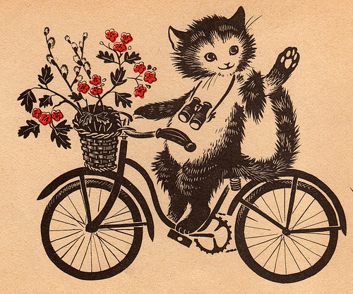 Cat riding bike by rosiesnumberoneboy.