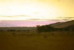 NIG245 (vicentemendez.com) Tags: africa mountains niger del desert dune desierto duna montaas tuareg tenere ar