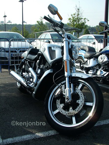 harley davidson night rod 2009. 2009 Harley-Davidson Night Rod