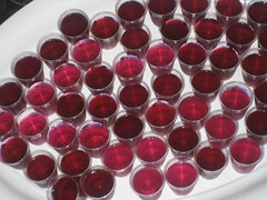 Purple Jelly Shots!