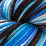 Fall Field trip to the Aquarium on Bulky Rambouillet -4 oz (...a time to dye)