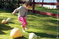 Ysoline Kicking Amigurumi Pears