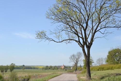 Straße nach Klempenow