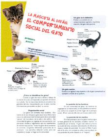 Revista para Mascotas