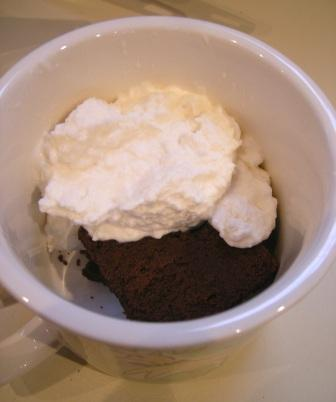 Feb 2009 Daring Baker Challenge: Chocolate Valentino Cake and Snow Ice Cream