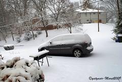 Winter 2009 - 001