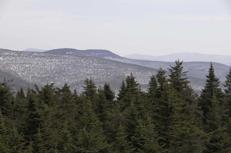 View East from Balsam Mountain Tower