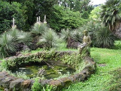 Orto Botanico (Rome) (Meg Zimbeck) Tags: rome ortobotanico