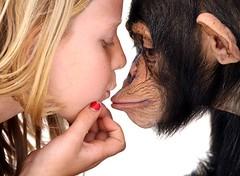 Humanity (Megan Lorenz) Tags: animal cat mammal coast big kissing gulf chimp humanity florida sarasota chimpanzee habitat primate soe sanctuary younggirl mywinners abigfave platinumphoto theunforgettablepictures goldstaraward