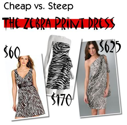 Animal Print Dress on Lookbook  Cheap Vs  Steep  The Zebra Print Dress