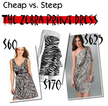 Animal Print Dress on Lookbook  Cheap Vs  Steep  The Zebra Print Dress