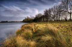 England, Northamptonshire: Lakeshore (Tim Blessed) Tags: uk sky nature water clouds reeds landscapes countryside scenery lakes wetlands grasses ponds singlerawtonemapped