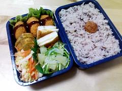 Lovin' to your tummy! (skamegu) Tags: salad box bento tamagoyaki   hanpen      hampen