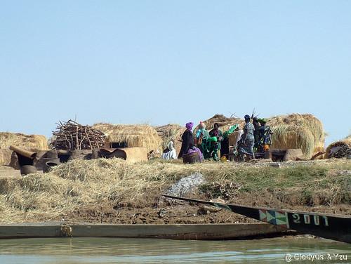Fleuve Niger, Habitat -07