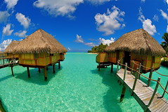 DSC_0478 (fotos by greg) Tags: nikon tropical tahiti borabora d300 crystalblue bunbalows