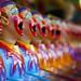 A Chorus Of Clowns par Naomi Frost