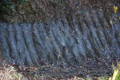 森泉 画像50