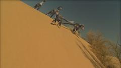 bajando de la duna