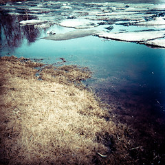 (Cajsu) Tags: reflection film ice nature water grass finland river landscape outdoors spring melting flood analogue agfa isoly kodakportra400nc bsquare