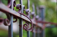 don't give up on me: 111/365 (helen sotiriadis) Tags: canon fence rust iron dof bokeh athens depthoffield greece 365 canonef50mmf14usm hbw  maroussi canoneos40d fencekeh toomanytribbles m
