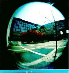 HOLGA 120GN (Riccardo Pastore) Tags: colors canon eos holga kodak experiment fisheye 160vc portra canoneos holga120 expiredfilm pellicola holga120gn youcancanon pellicolascaduta