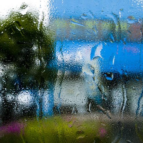 Wet Bus Window