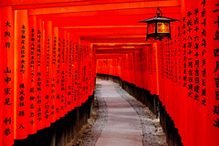 Fushimi Inari taisha, Kyoto, Japan / Japn (Lost in Japan, by Miguel Michn) Tags: travel light red japan temple luces kyoto shrine shadows inari culture viajes  tradition kioto  torii  sombras jinja fushimiinari tradicin santuario japn fushimiinaritaisha     fushimiku  flickraward flickraward5 flickrawardgallery