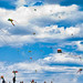kite image, photo or clip art