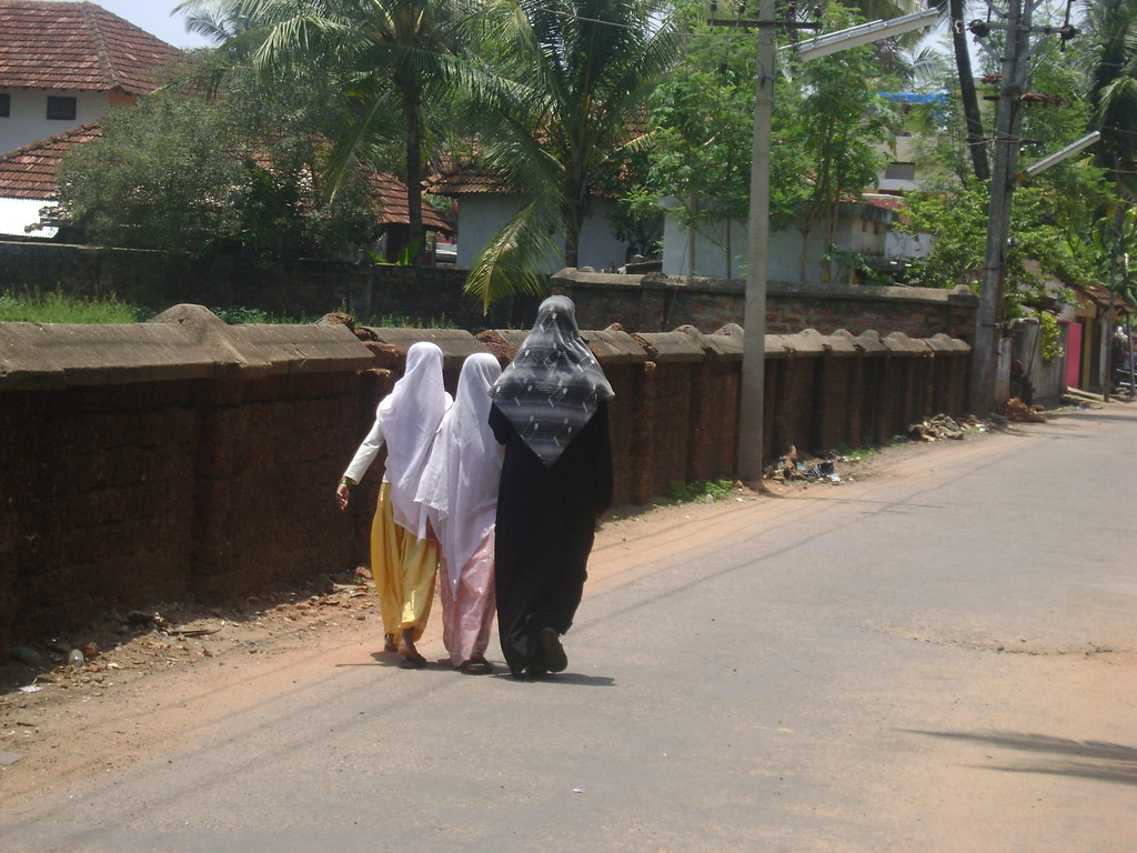 kozhikode muslim Ya its correct in terms of colour ,look etc because in malabar region north malappuram,calicut,kannur and especially kasaragod , the muslim population is very high ,and we all know ,the islam relegion entered in kerala through arab ,persian , travallers and merchants so the muslim peoples from .