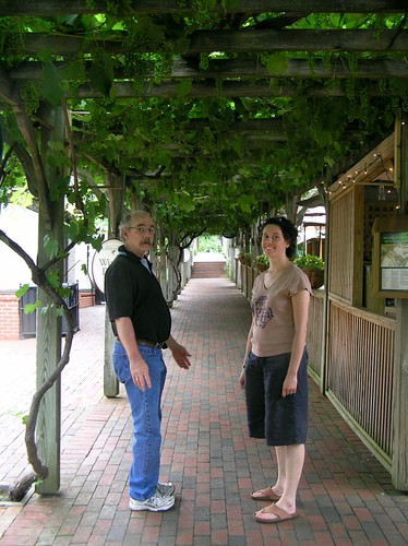 walking up to the winery (those are a bunch of unripe grapes on that arbor! it was spectacular!)