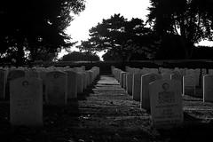 Otra vista del Cementerio - Another view of Fort Rosecrans National Cemetery (Rob Unreall) Tags: california blackandwhite bw usa blancoynegro cemetery nikon san sandiego fort cementerio diego bn rob national d100 eeuu rosecrans unreall