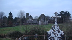 Quinn Castle (honey meets the moon) Tags: ireland quin quincastle