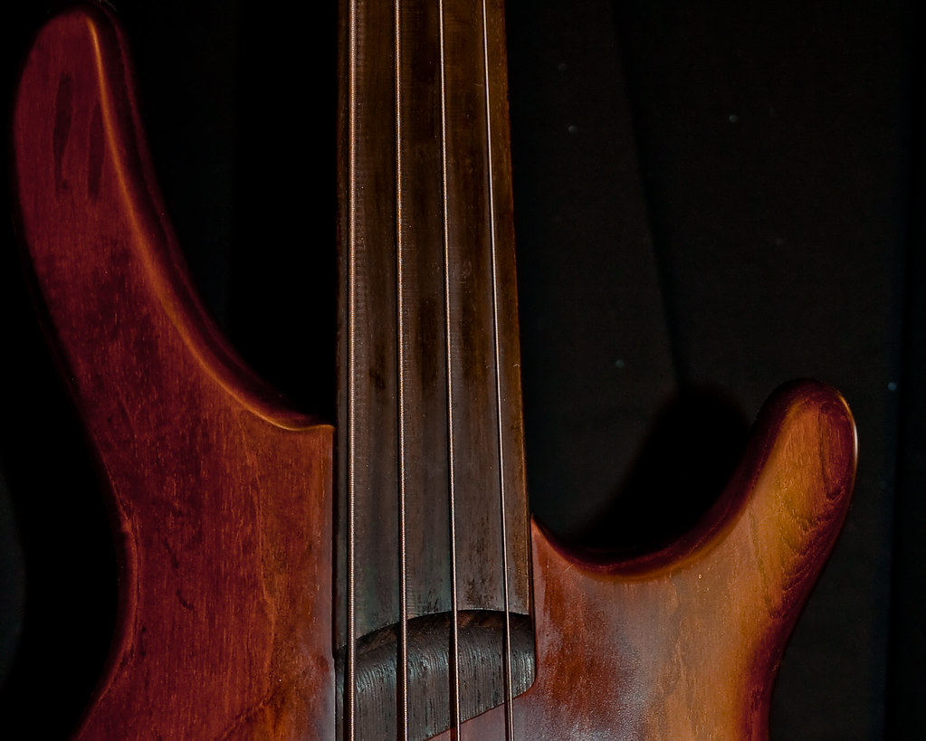 Fretless Bass - 22/365 - 26 June 2009