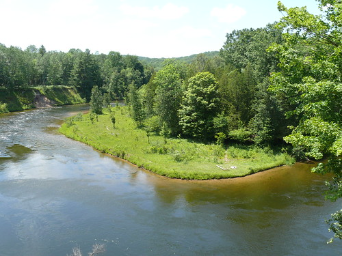 Manistee River in the Manistee National Forest