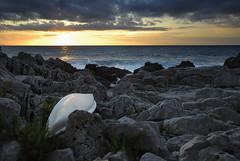 The White Canoe (Fabio Montalto) Tags: sunset sea seascape photography rocks flickr photos images canoe sharing sicily cefal blueribbonwinner nikond200 supershot nikfilters flickraward platinumheartaward colorefexpro30 capturenx2 wagman30