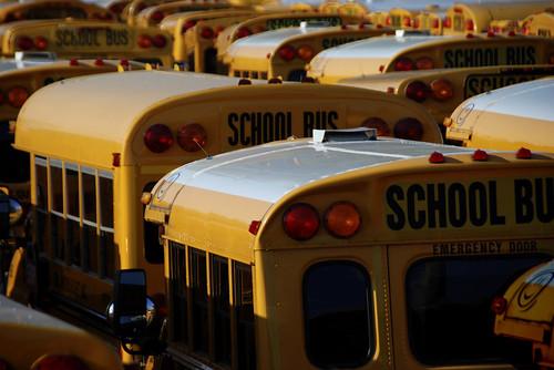 School Buses2