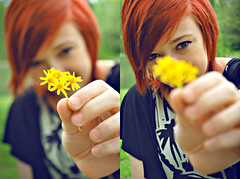 156/365 - Leaving the past, in the past. (Www.CourtneyCarmody.com/) Tags: flowers red orange flower yellow hair photography pretty y o d c courtney m r daisy hayley calamity willaims hayleywilliams carmody calamityphotography courtneycalamity courtneycarmody courtneycalamityphotography courtneycarmodyphotography courtneycarmondy courtneycarmidy