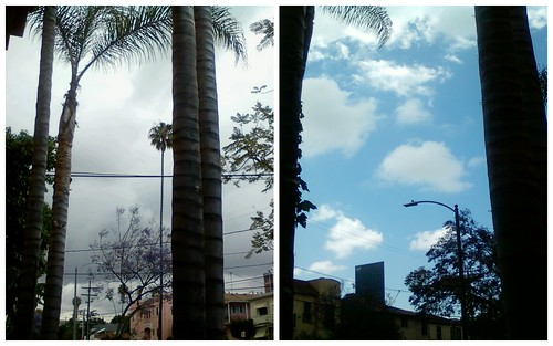 Split Personality Weather