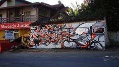 prozak-noiz tim-tchais (PROZAK7) Tags: street art graffiti arte board skate da skateboard lagoa conceio sandboard cdl ldc ruz cantodalagoa srtreetart flrripa