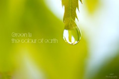 - www.bloggakpphoto.net (l AKP Photography) Tags: light macro green waterdrop soft reflaction