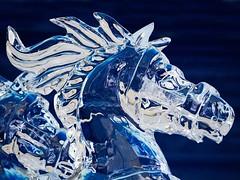 IMG_1564 (Mary Susan Smith) Tags: sculpture horse ice ottawa winterlude crystalgarden bigmomma challengeyouwinner 3waychallengewinner cychallenge9votes photofaceoffwinner photofaceoffgoldmedal pfogold thechallengefactory tcfwinner confederationparty