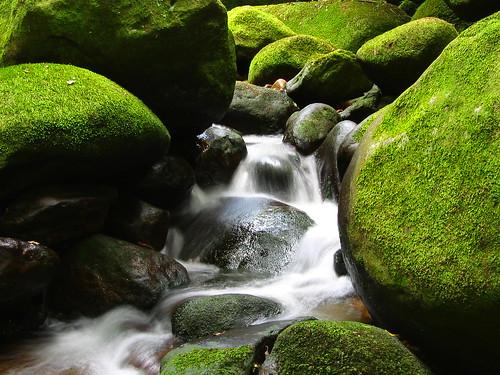 nature rivers rocks green white water favorites