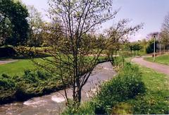 (capu <Liliane>) Tags: trees water analog photography eau quiet fuji pentax arbres parc feuilles verdure 400iso limoges mz50 alle paisible