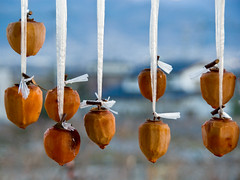 'kaki' being dried (beeldmark) Tags: japan fruit rural japanese countryside  persimmon  yamanashi japonais kaki japans kasugai inaka diospyros  japanisch japanesepersimmon  ruraljapan  hoshigaki   kasugaicho fuefukishi beeldmark orientalpersimmon   persimoen dadelpruim
